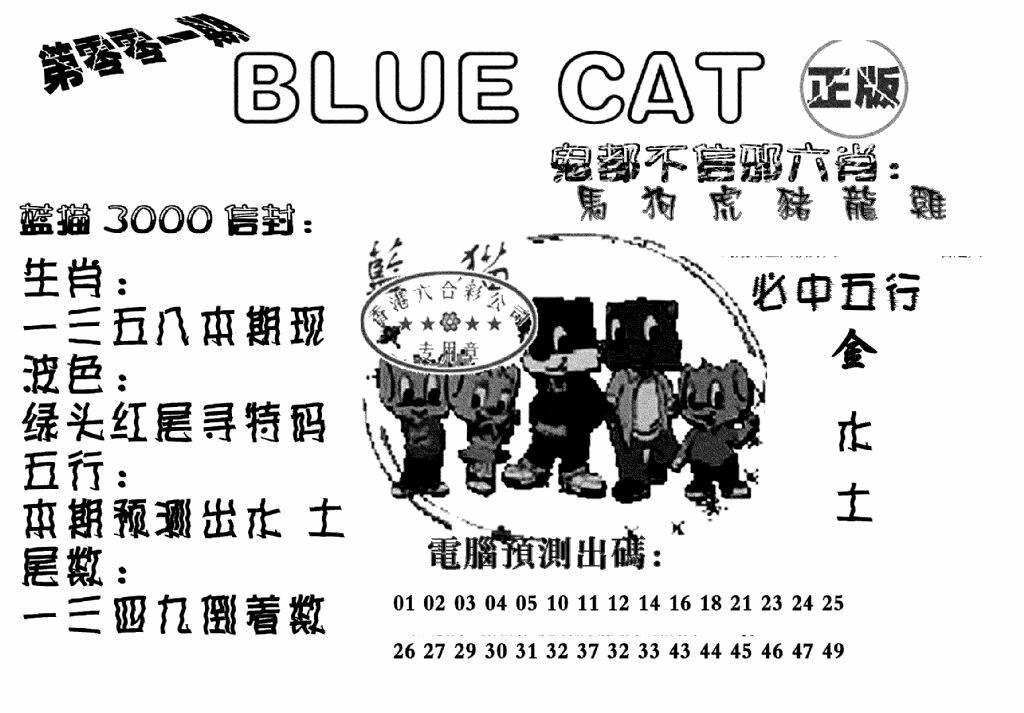 001期蓝猫BlueCat(黑白)