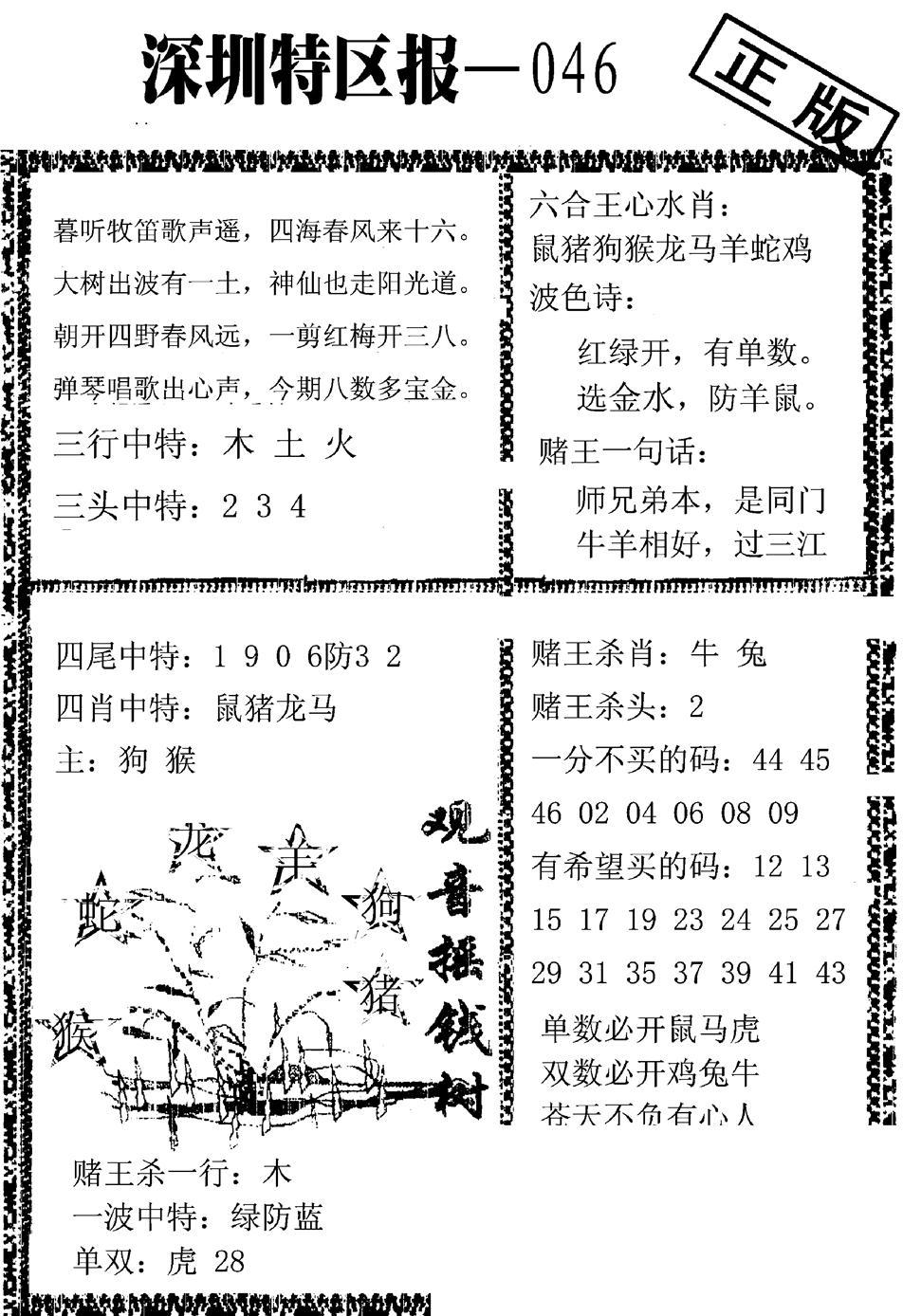 046期深圳特区报A