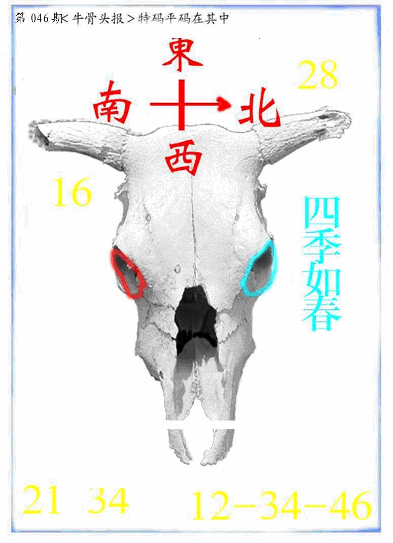 046期牛派系列7