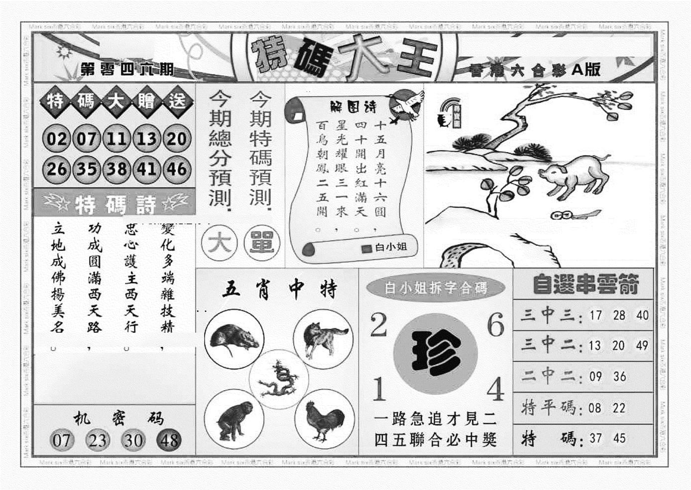 046期特码大王A(黑白)