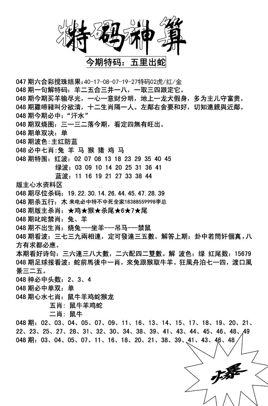 048期特码神算(黑白)