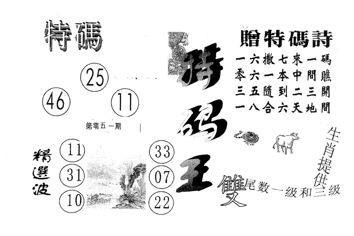 051期特码王B(黑白)