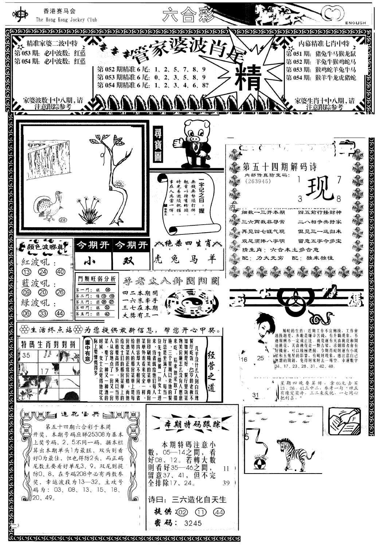 054期管家婆-波肖尾版(热)(黑白)