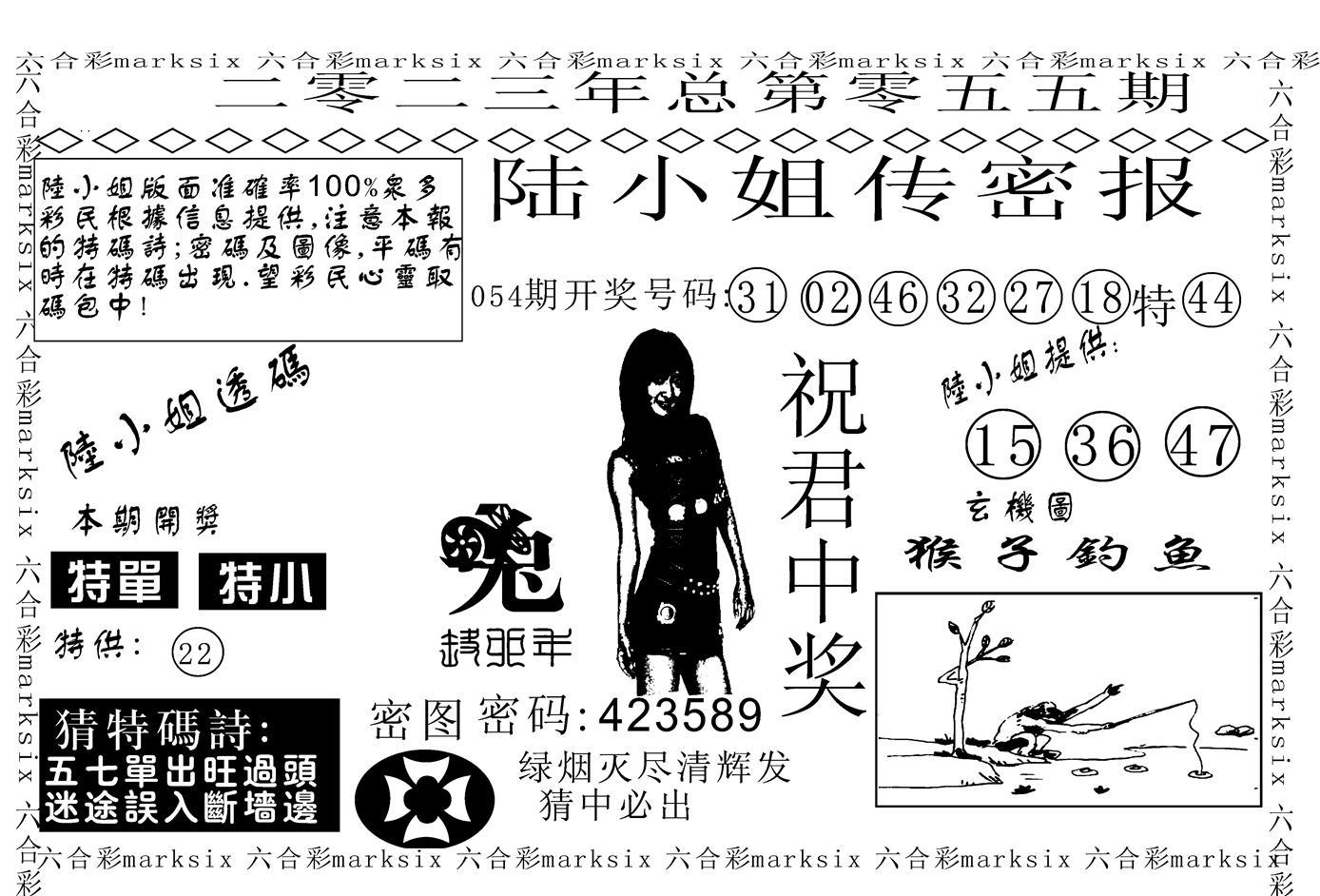 055期陆小姐传密A(黑白)