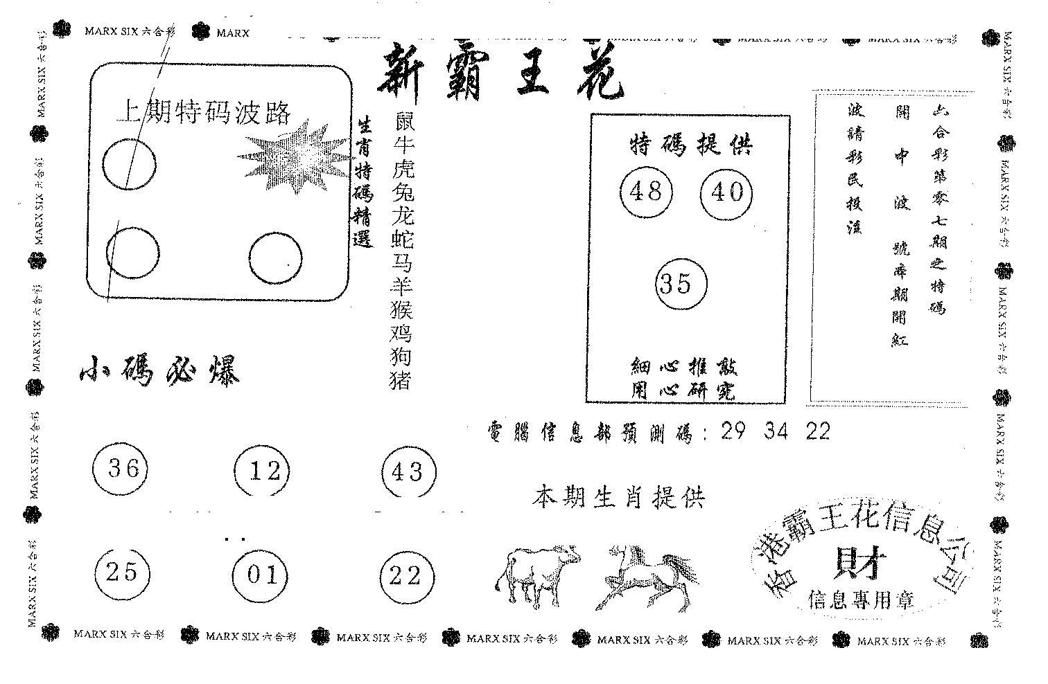 061期新霸王花(黑白)