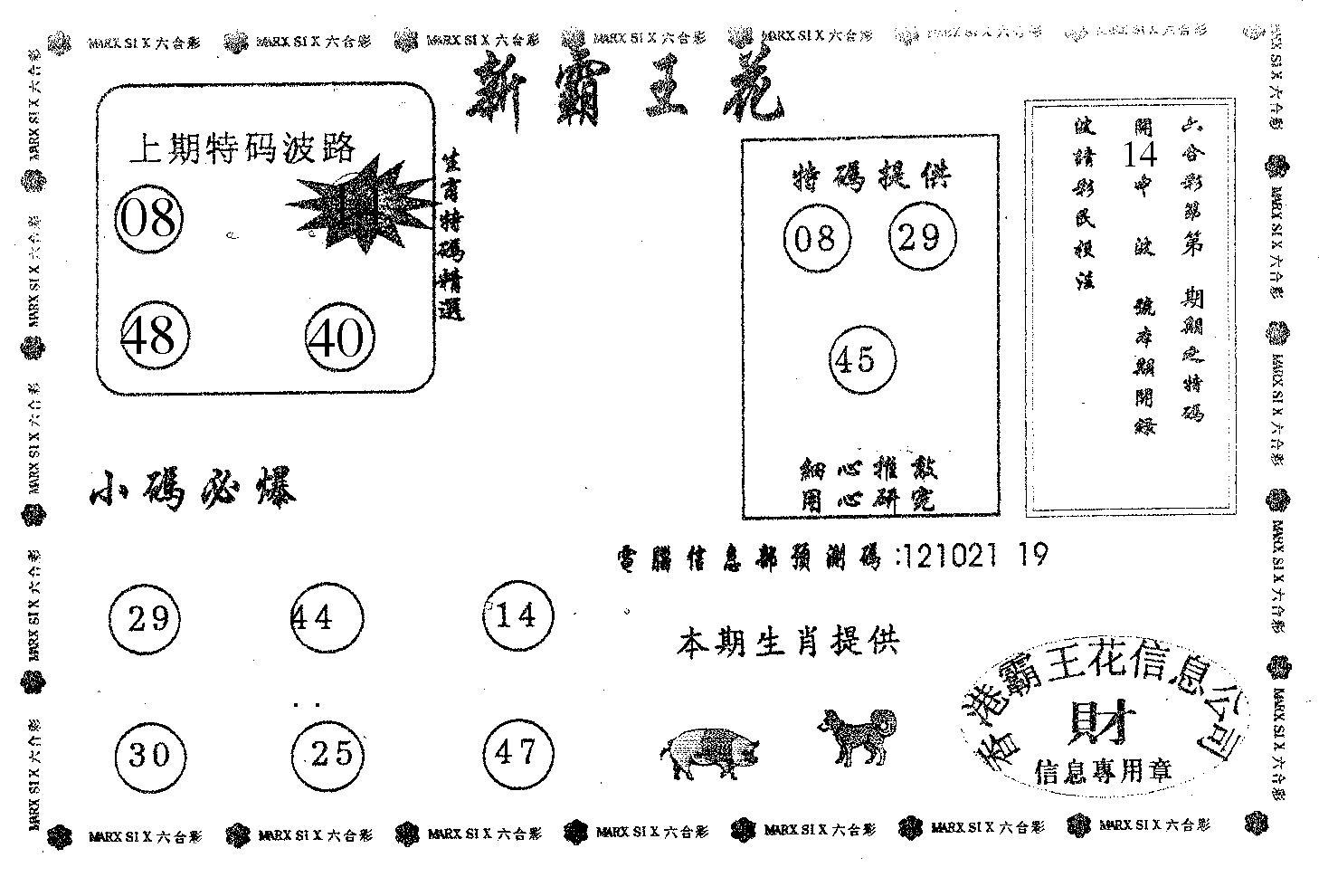 062期新霸王花(黑白)