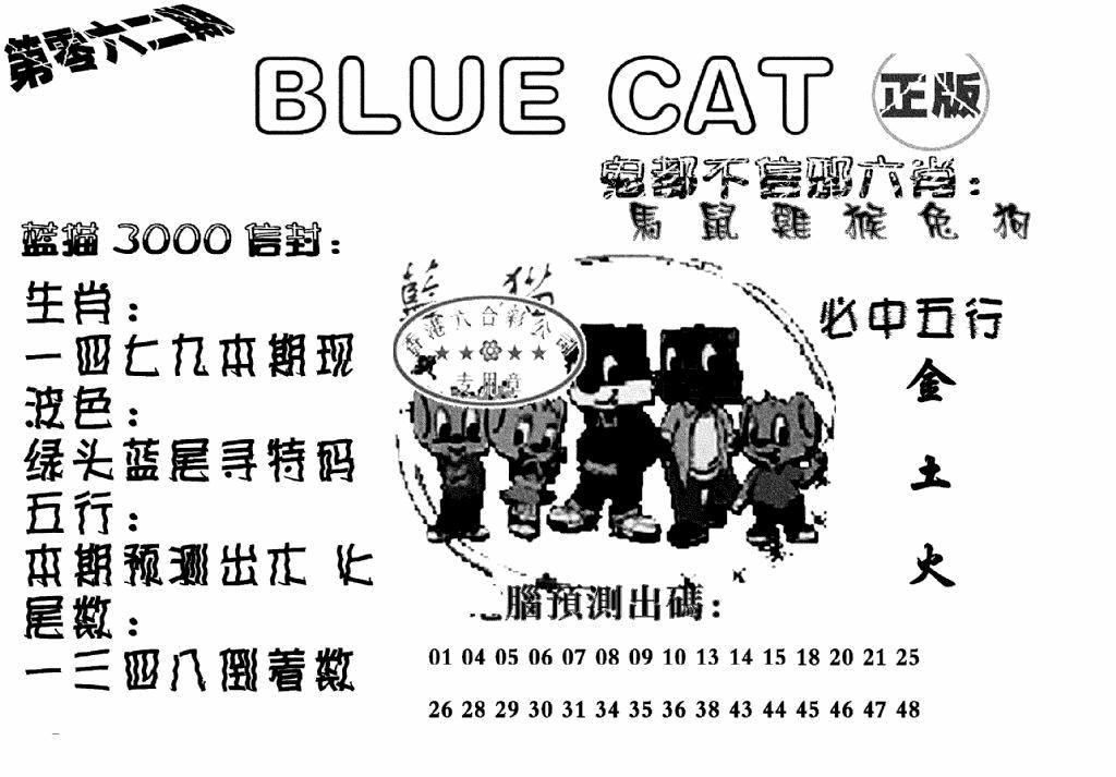 062期蓝猫BlueCat(黑白)