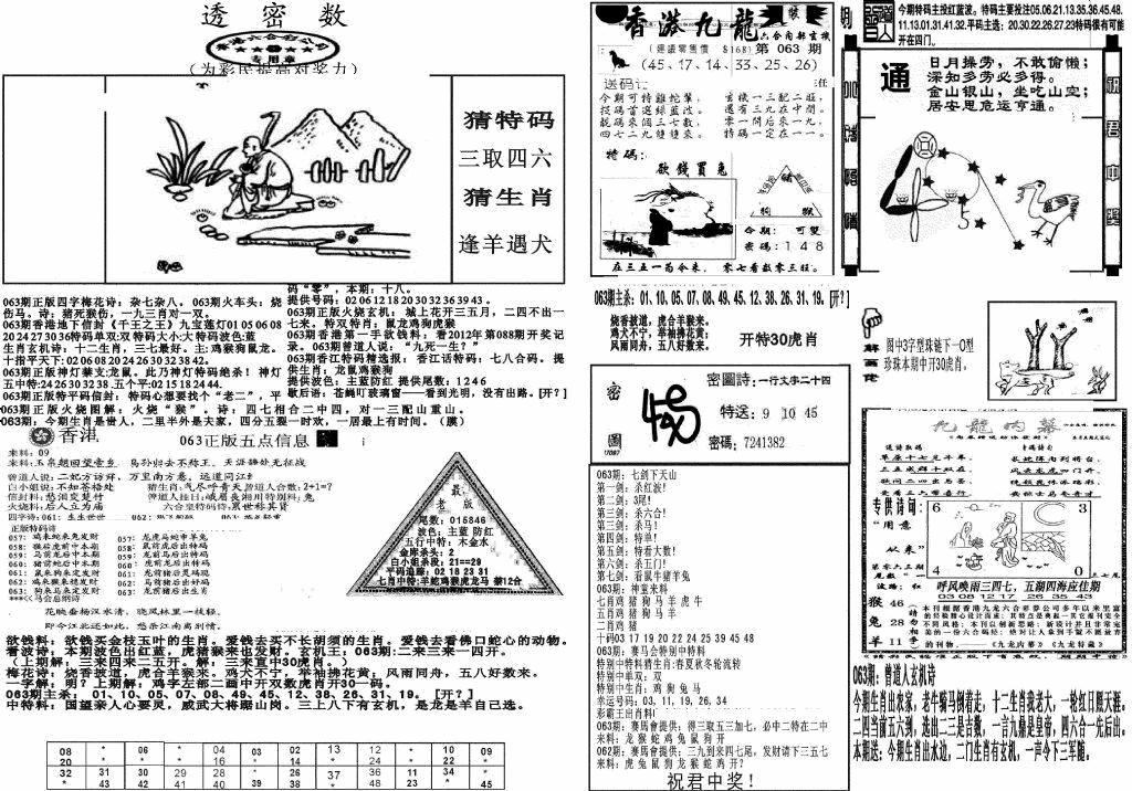 063期新透密数B(新)(黑白)