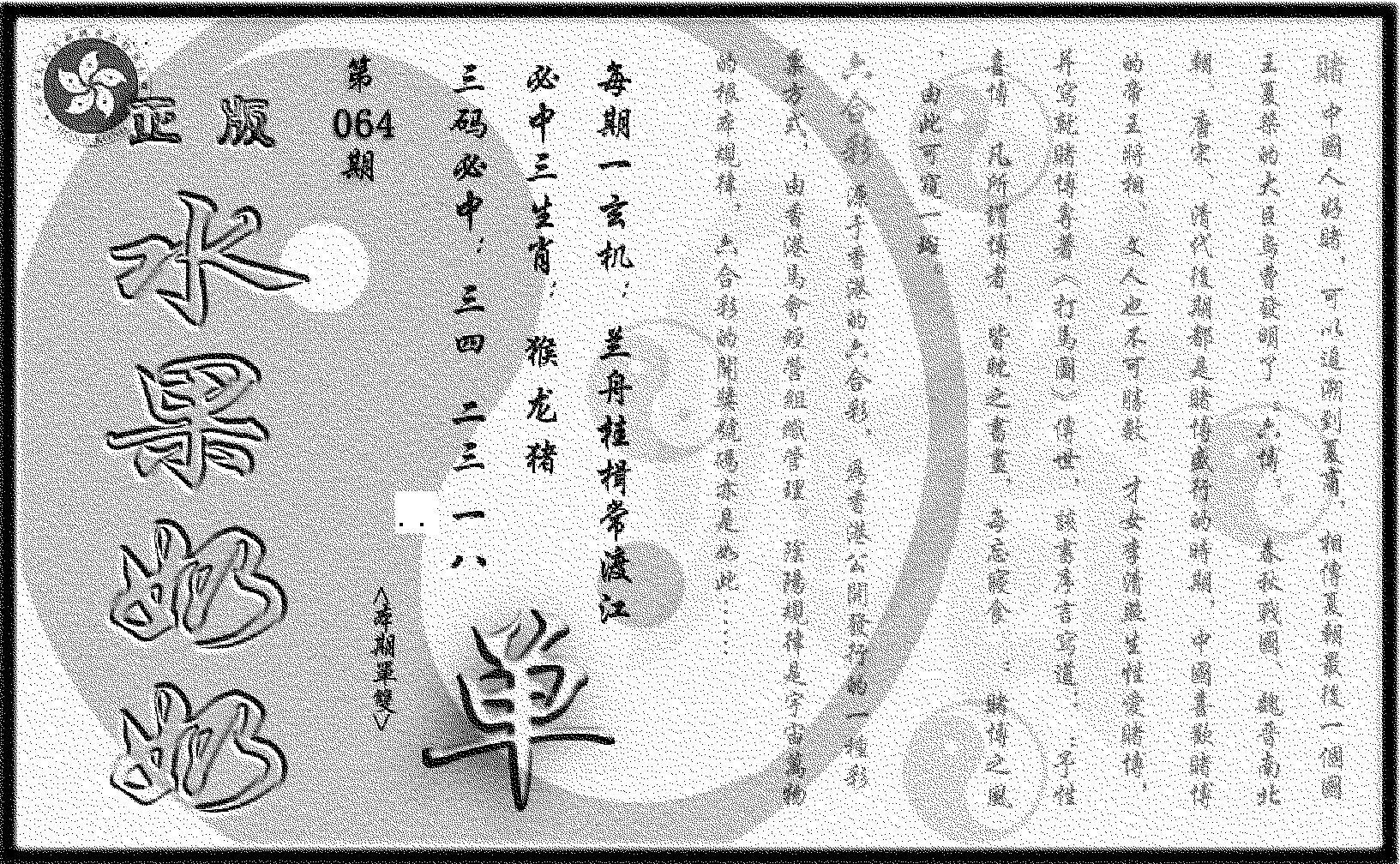 064期(九龙单双攻略)正版(黑白)