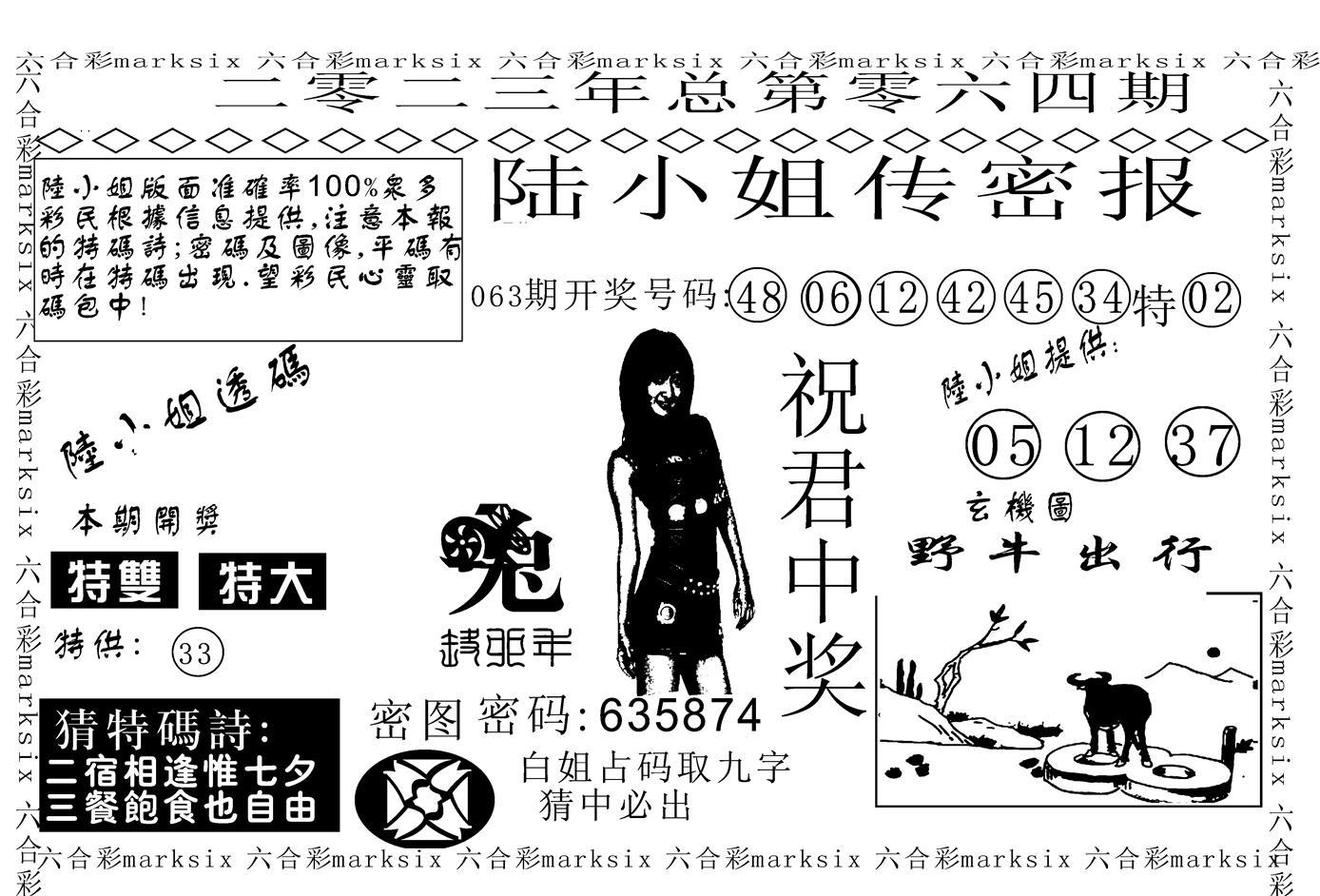 064期陆小姐传密A(黑白)