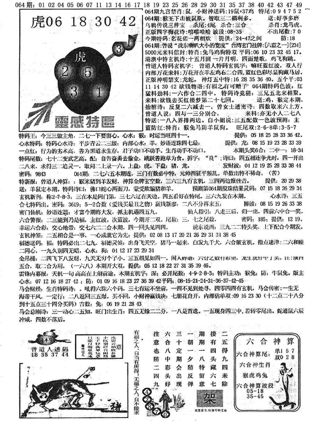 064期平西版彩霸王B(黑白)