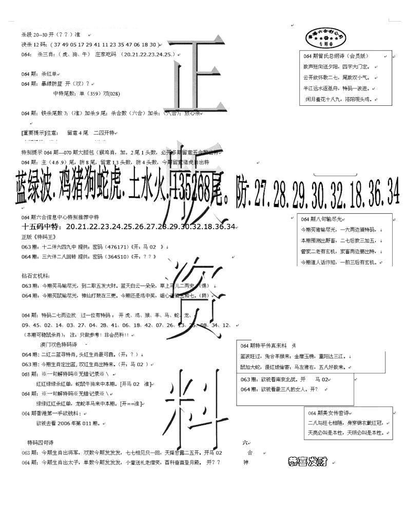 064期正版资料(黑白)