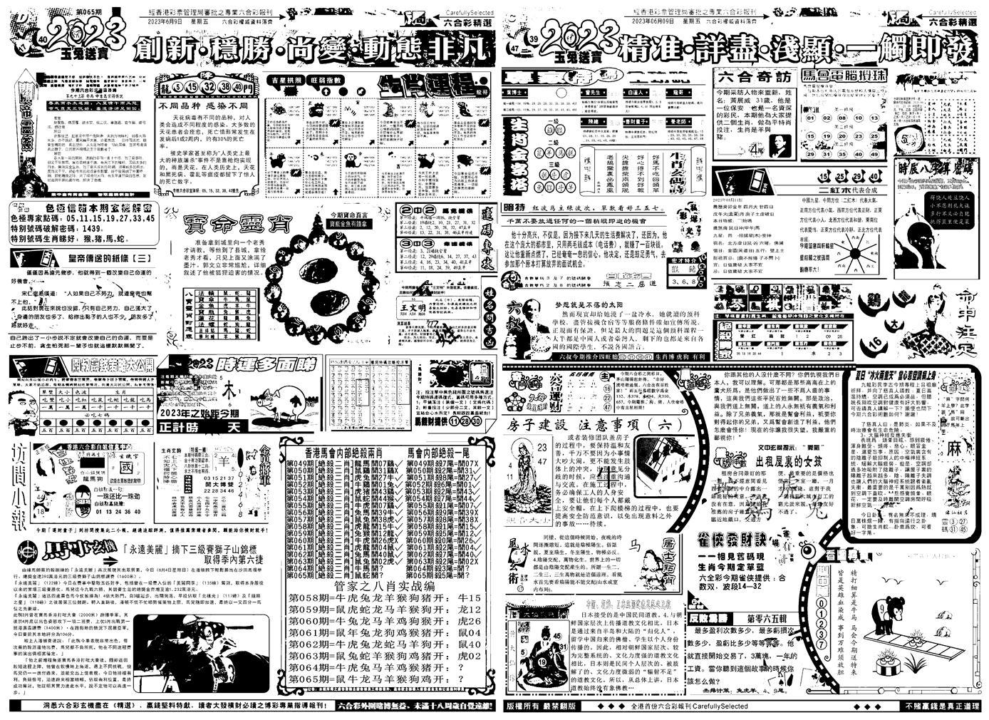 065期六合精选B(黑白)