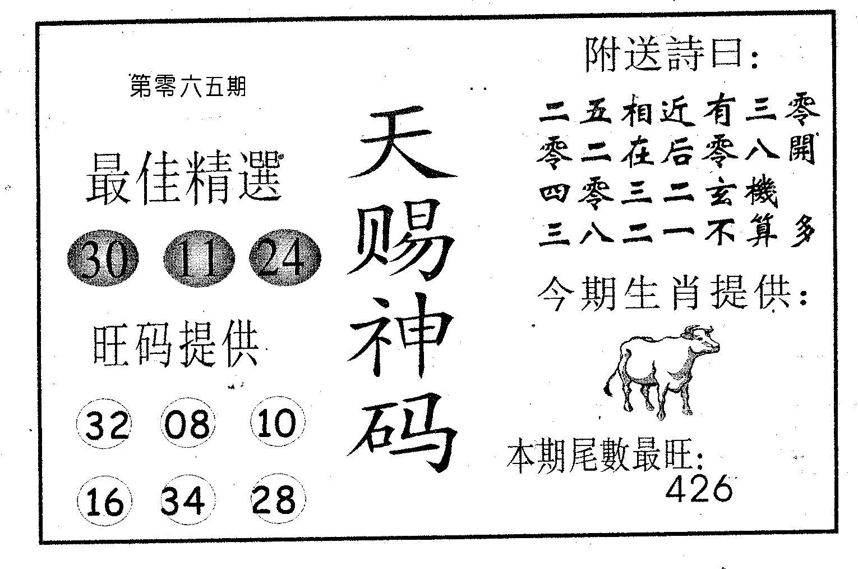 065期天赐神码(黑白)