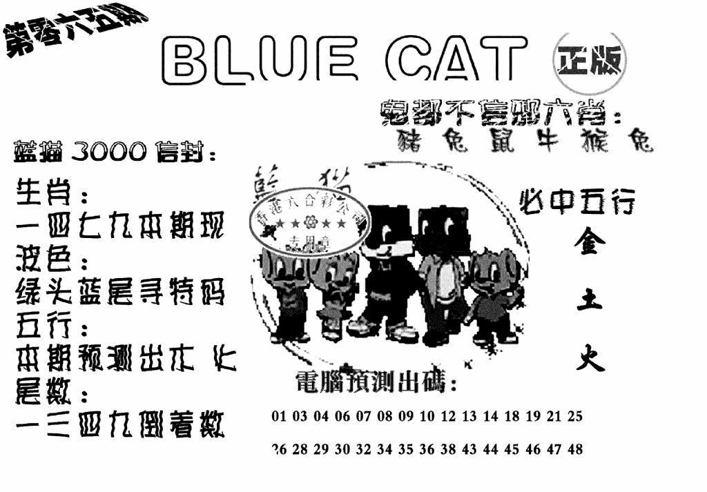 065期蓝猫BlueCat(黑白)