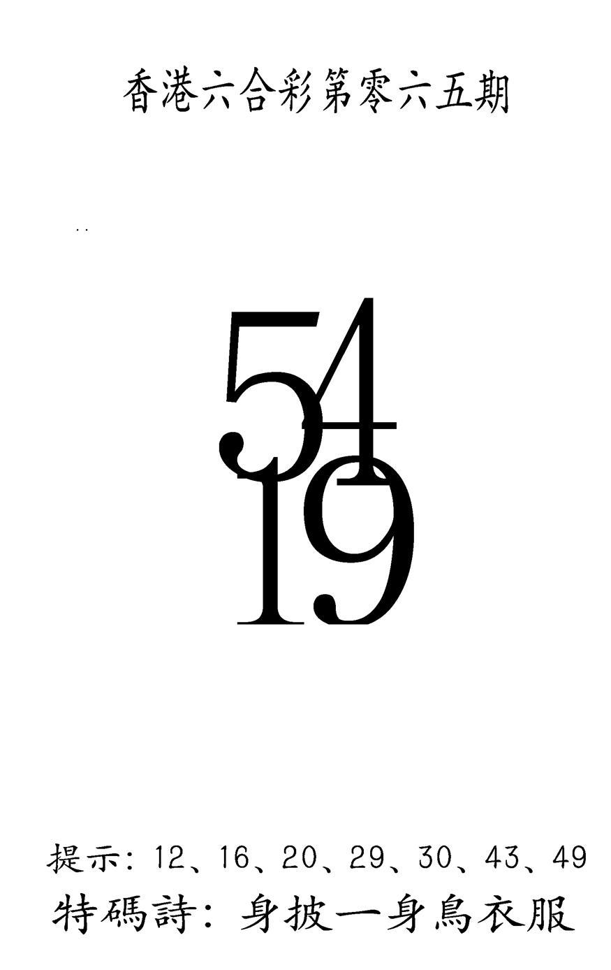 065期另澳门三合王A(黑白)