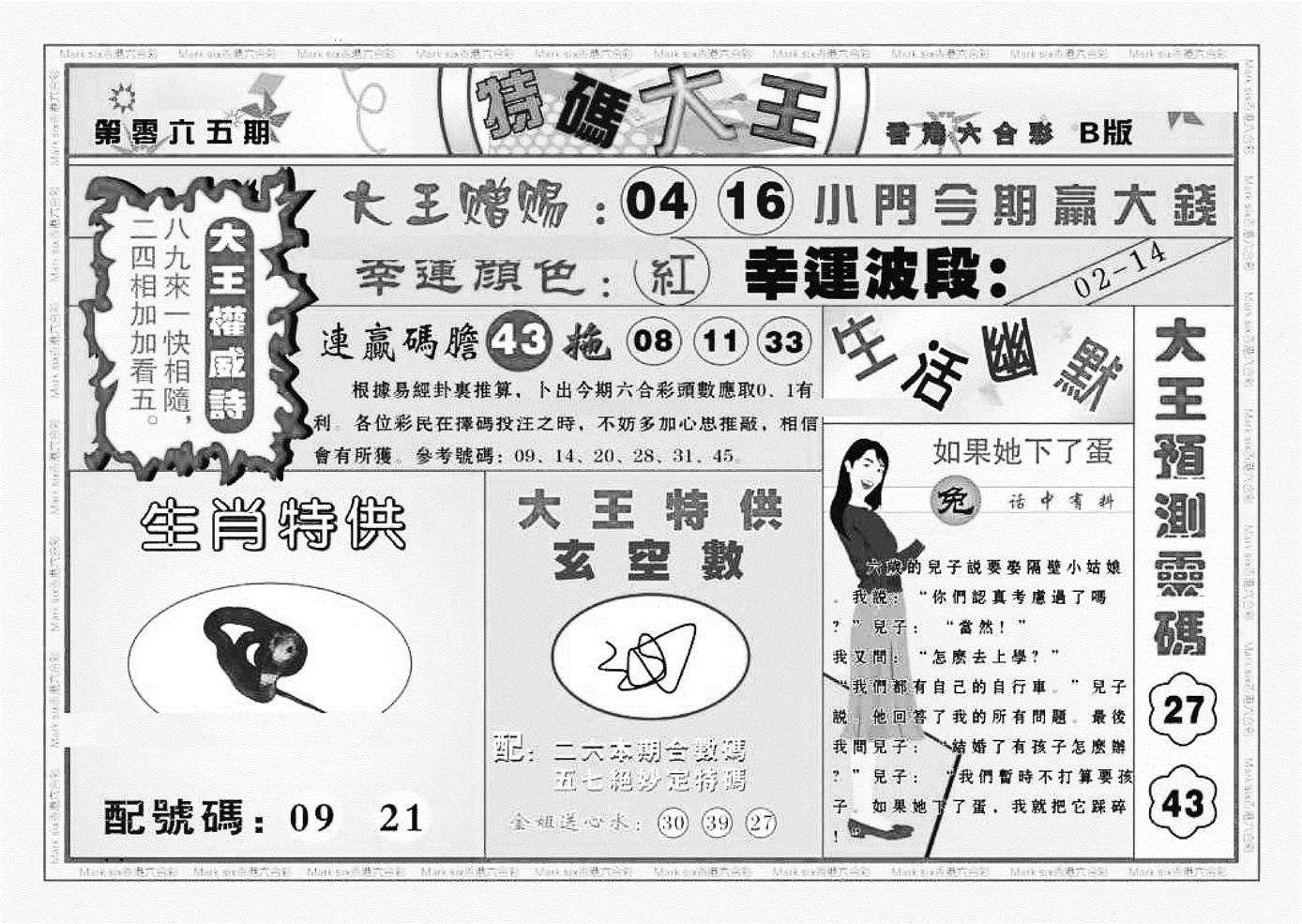 065期特码大王B(黑白)