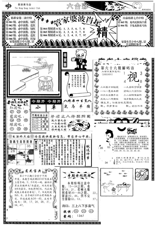 066期管家婆-波肖尾版(热)(黑白)