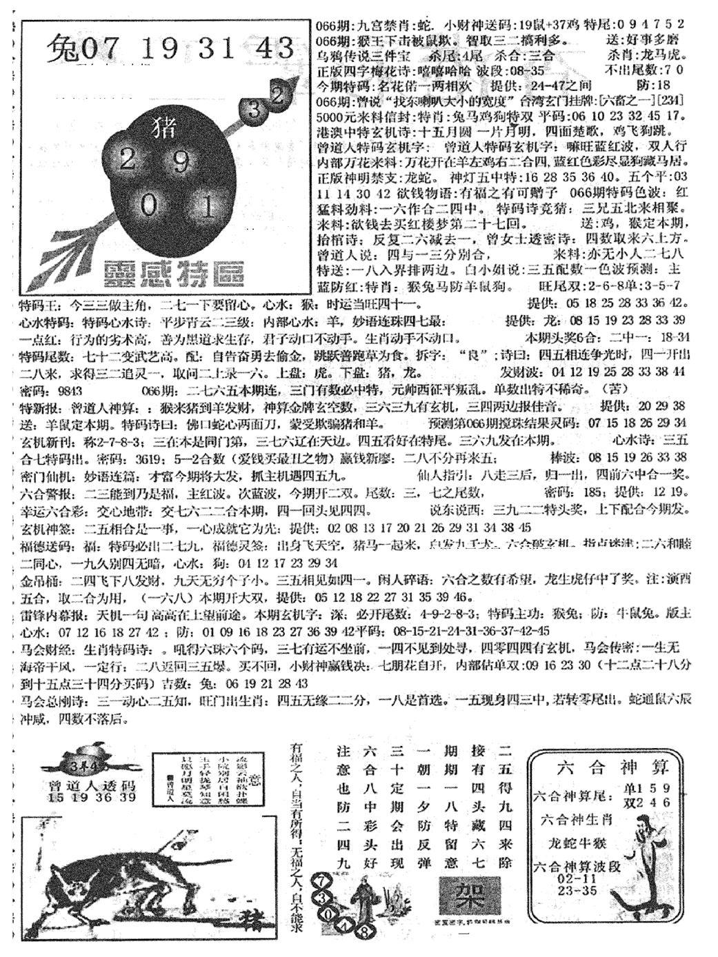 066期平西版彩霸王B(黑白)