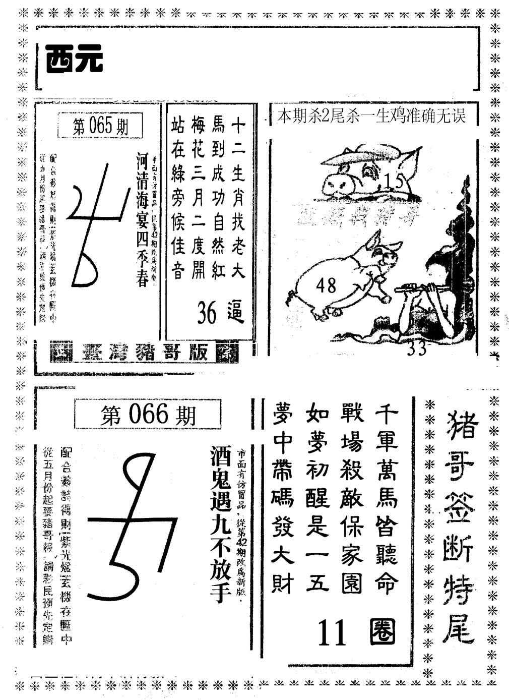 066期猪哥段特尾(黑白)