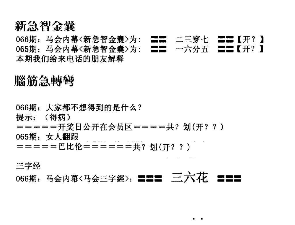 066期新急智金囊(黑白)