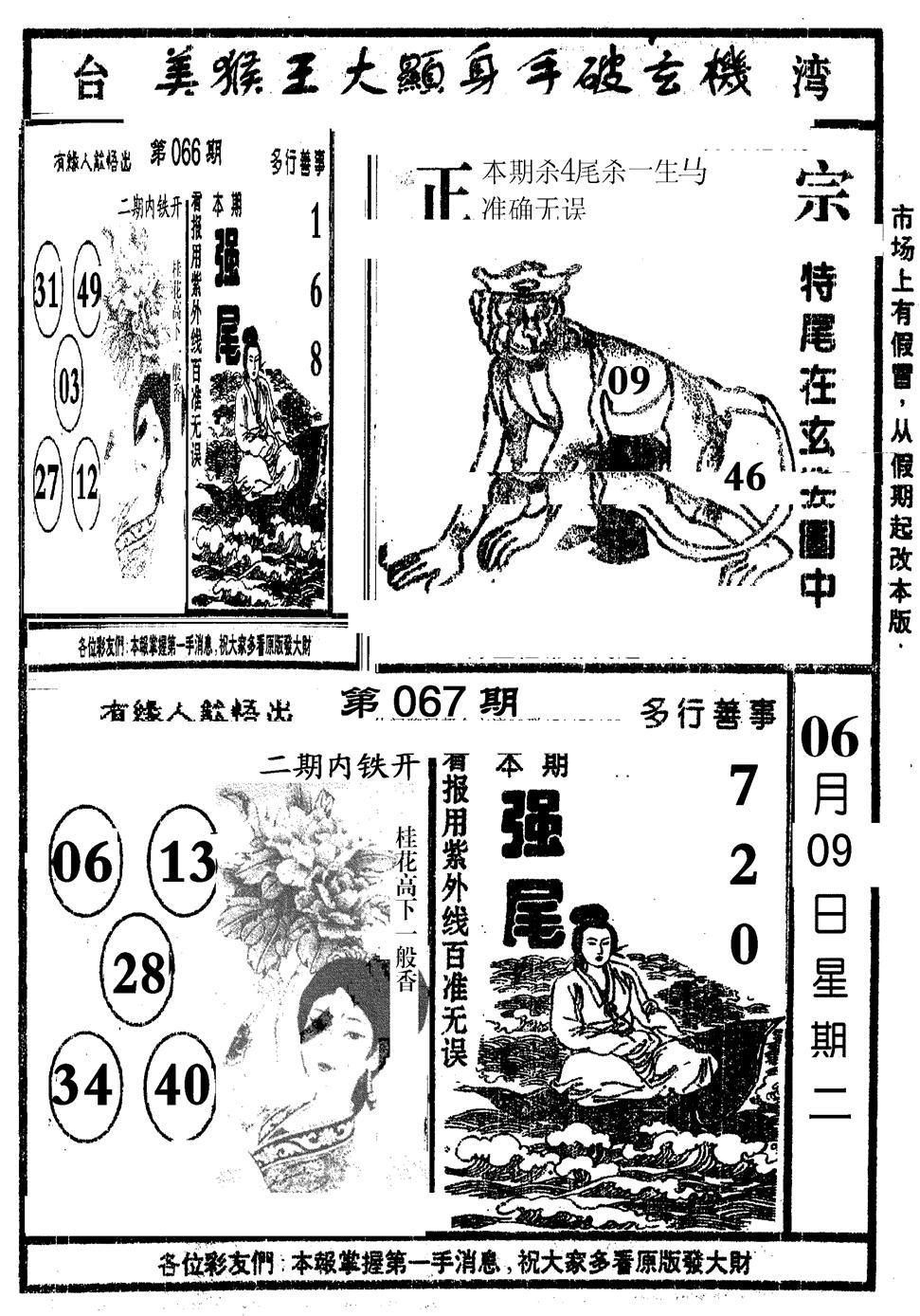 067期猪哥段特尾(黑白)