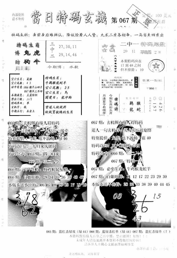 067期另当日特码玄机A版(黑白)