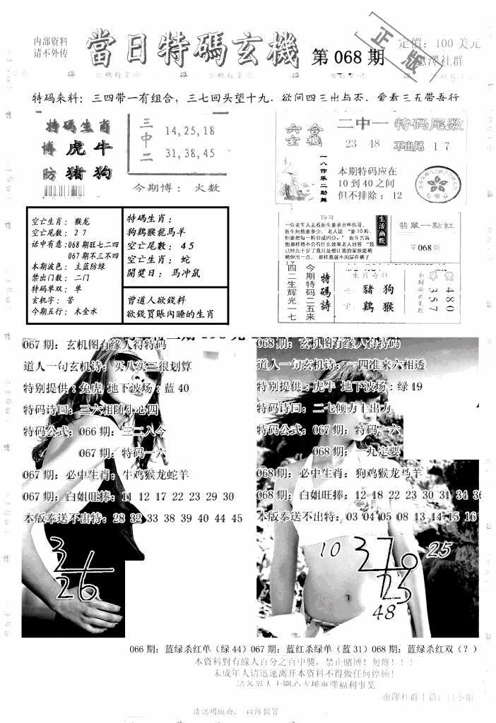 068期另当日特码玄机A版(黑白)
