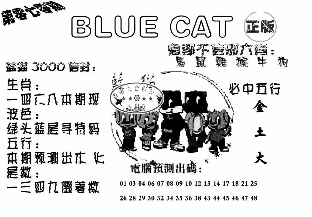 070期蓝猫BlueCat(黑白)