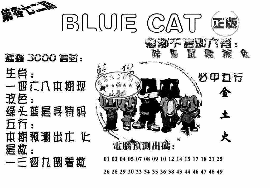 072期蓝猫BlueCat(黑白)