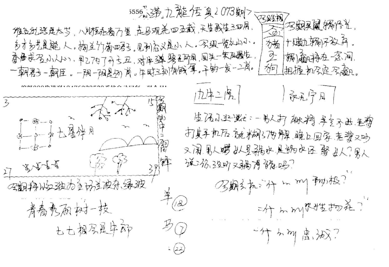 073期手写九龙内幕A(黑白)