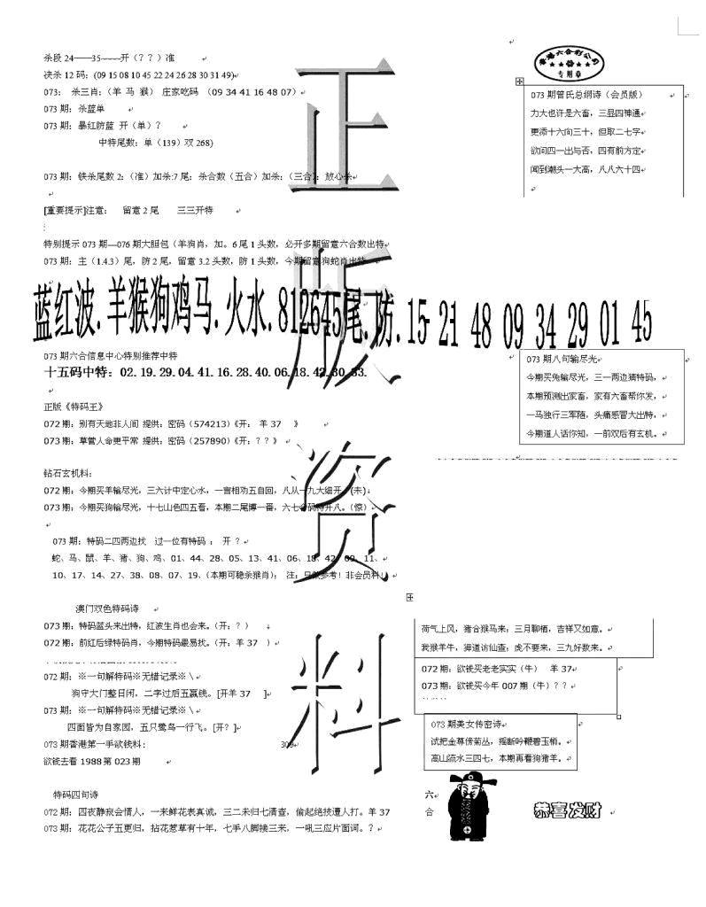 073期正版资料(黑白)