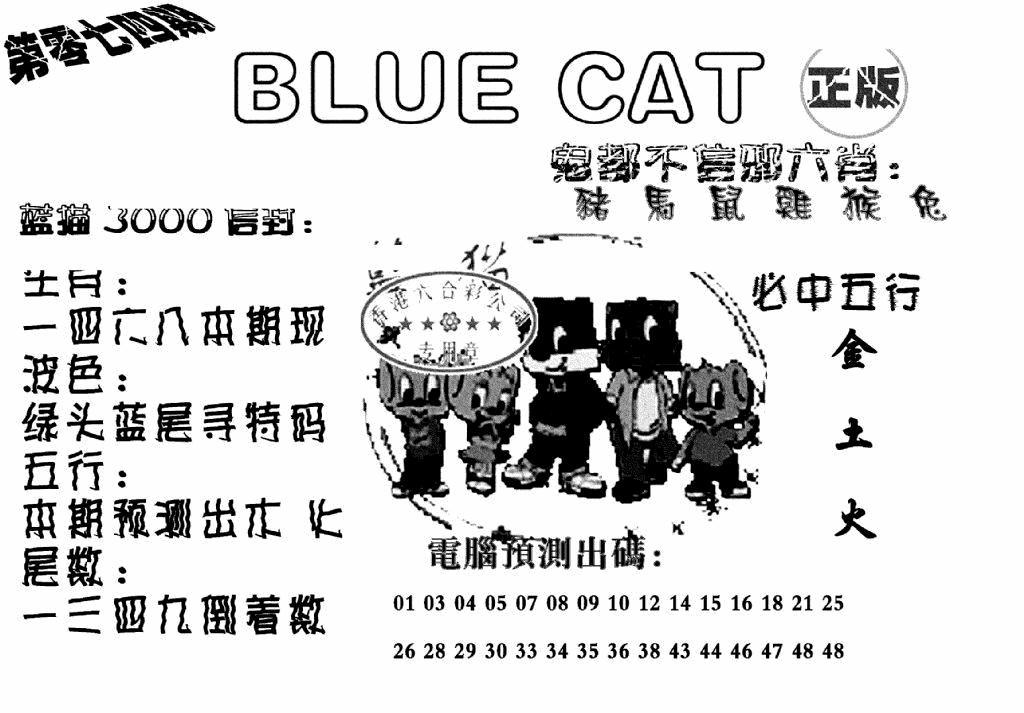 074期蓝猫BlueCat(黑白)