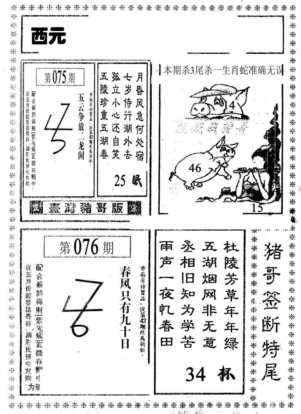 076期猪哥段特尾(黑白)