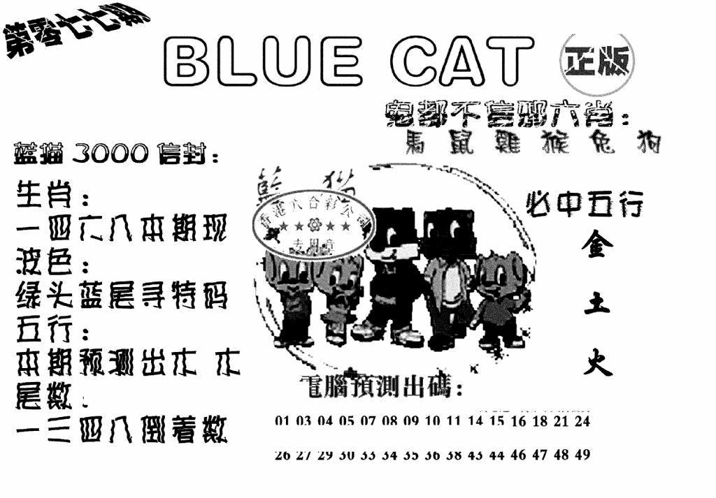 077期蓝猫BlueCat(黑白)