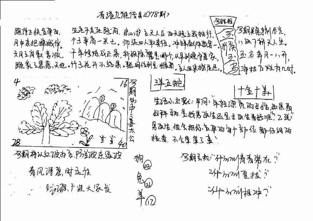 078期手写九龙内幕B(黑白)
