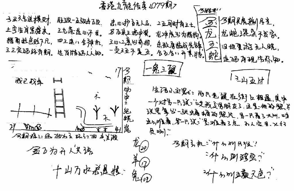 079期手写九龙内幕B(黑白)
