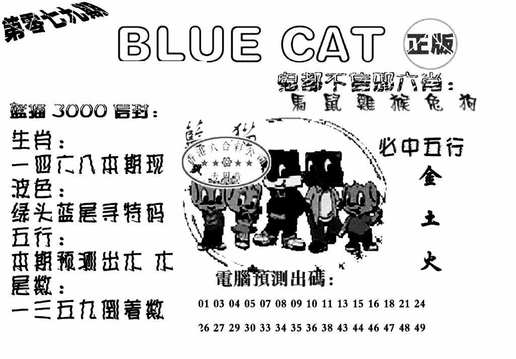079期蓝猫BlueCat(黑白)