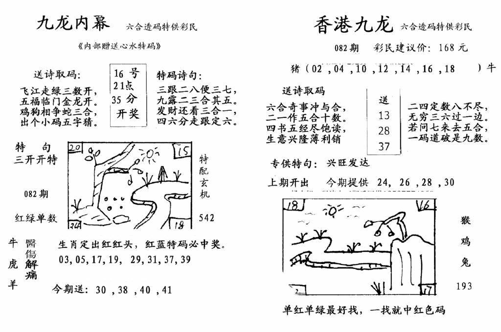 082期九龙内幕--开奖报(黑白)