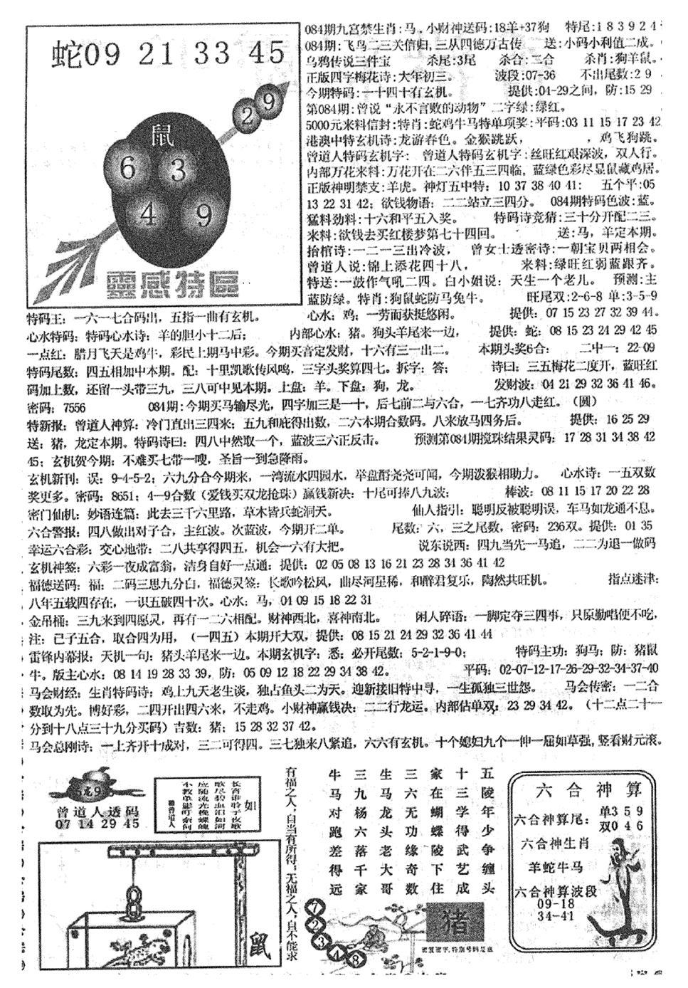 084期平西版彩霸王B(黑白)