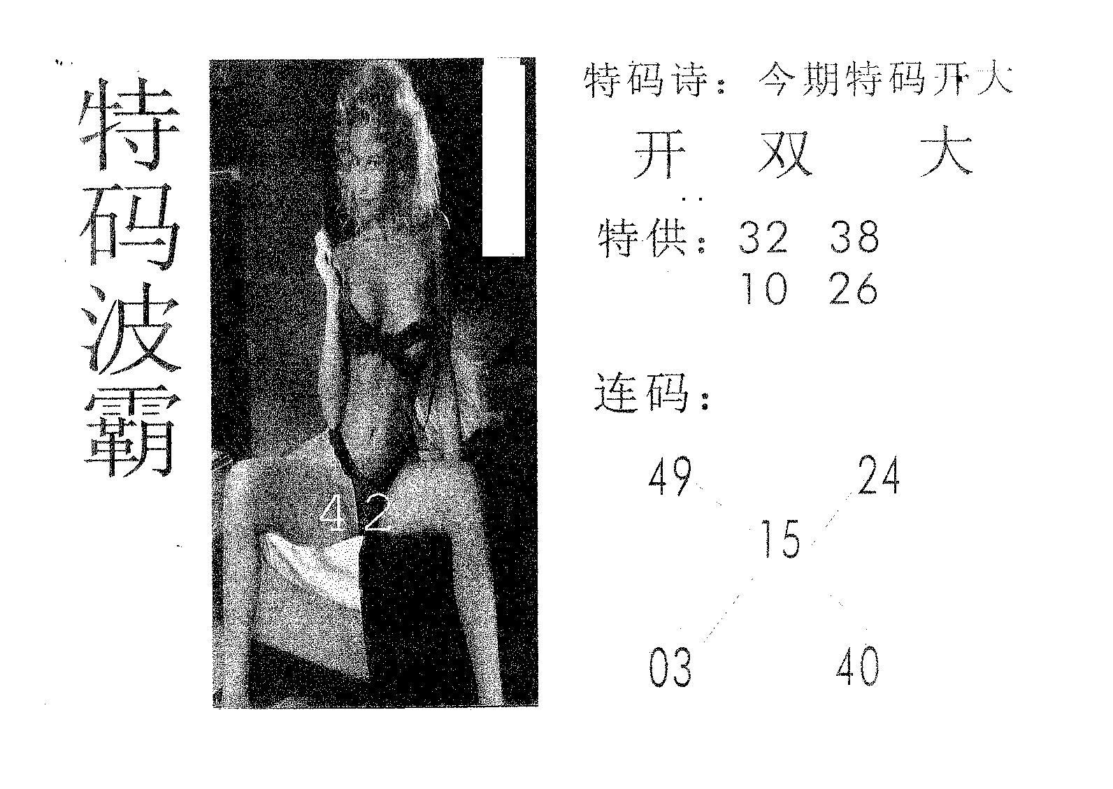 084期特码波霸(黑白)
