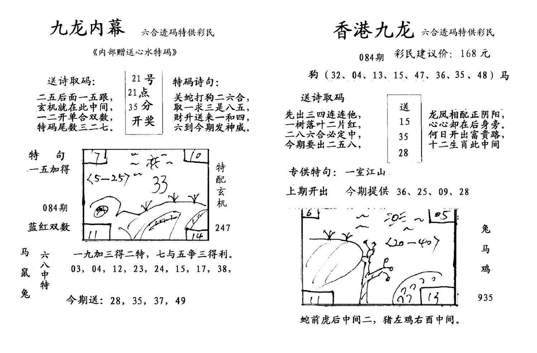 084期九龙内幕--开奖报(黑白)