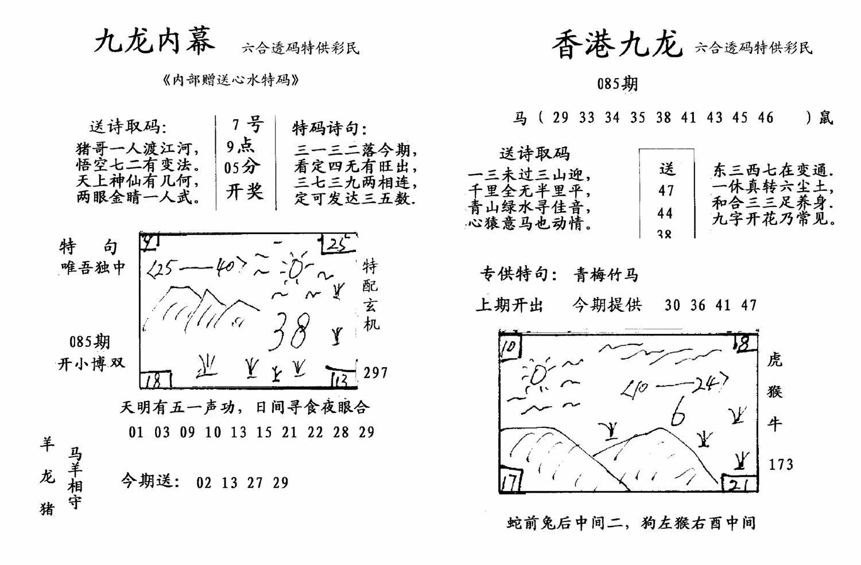 085期九龙内幕--开奖报(黑白)