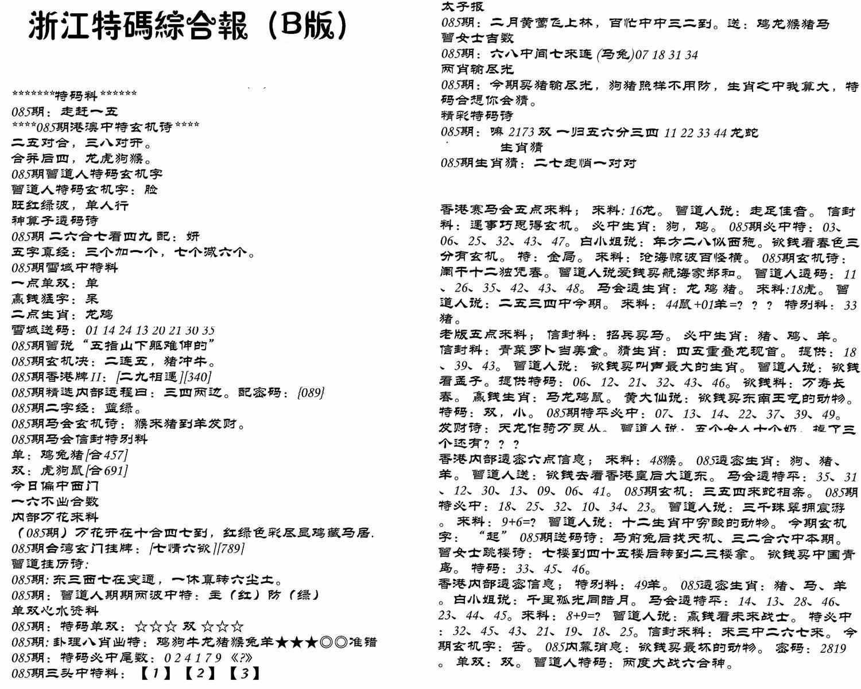 085期浙江特码综合报B(黑白)