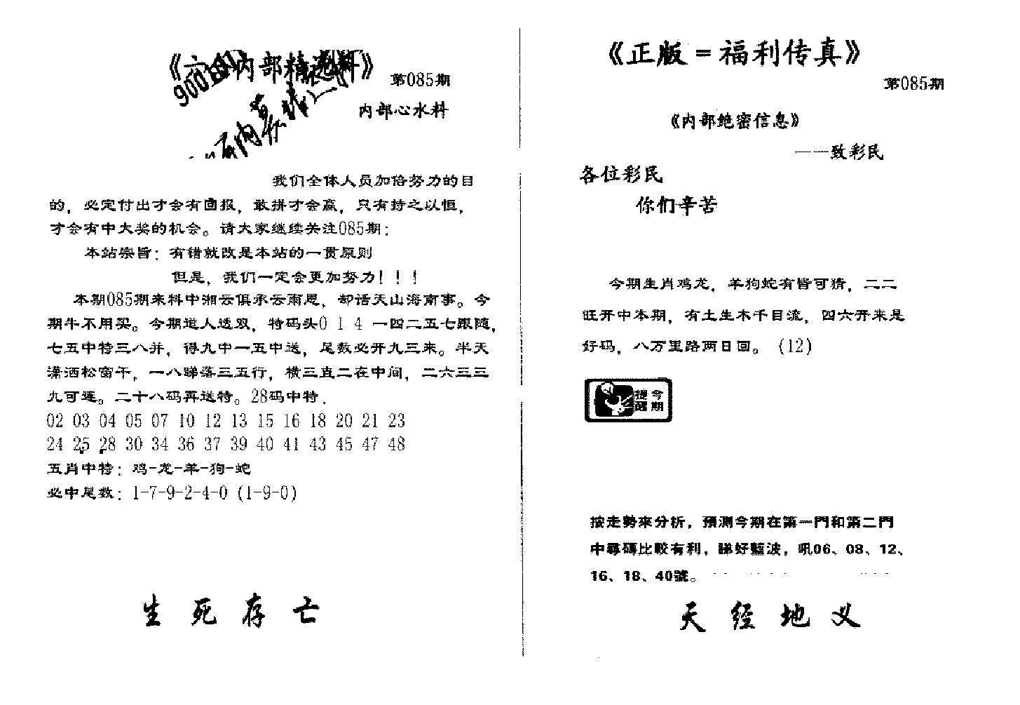 085期独家正版福利传真A(黑白)