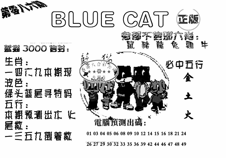 086期蓝猫BlueCat(黑白)