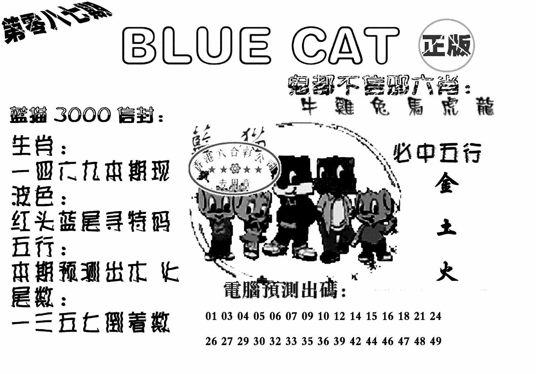 087期蓝猫BlueCat(黑白)