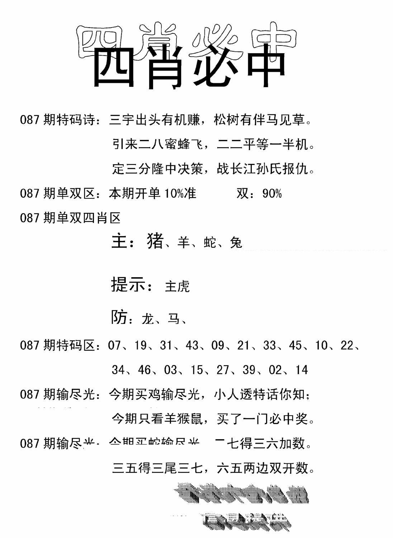 087期四肖中特(黑白)
