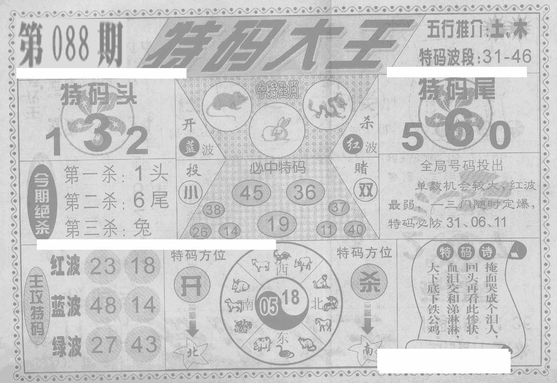 088期特码大王(黑白)