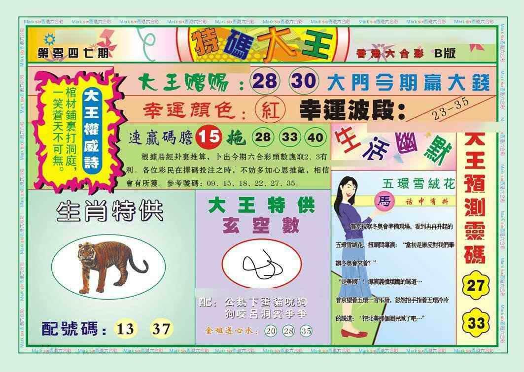 047期特码大王B(新图)